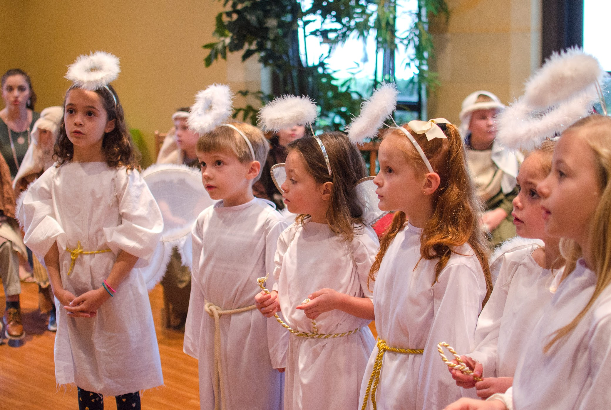The Christmas Pageant.Reflecting On The Christmas Pageant